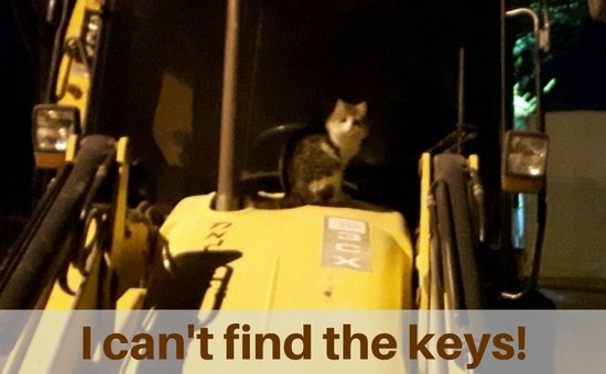 cat on backhoe